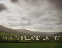 What's Ireland Eating?